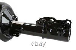 Front Complete Strut Pair for 2005-2009 2010 G6 2007-2009 Aura 2004-2012 Malibu
